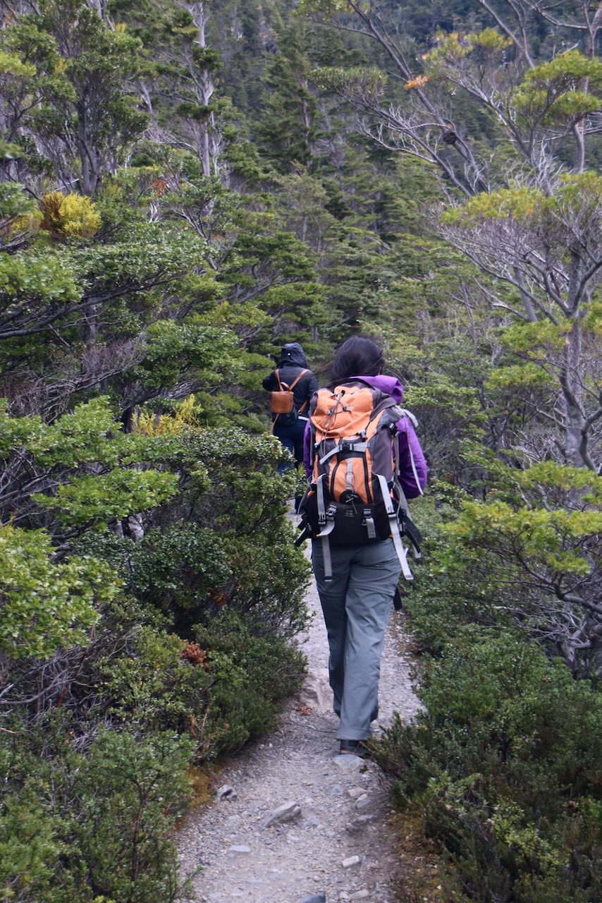 hiking in chile © dan ilves