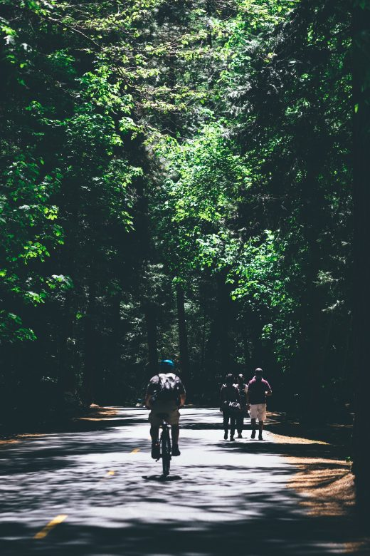 biking vacations are a great way to tour